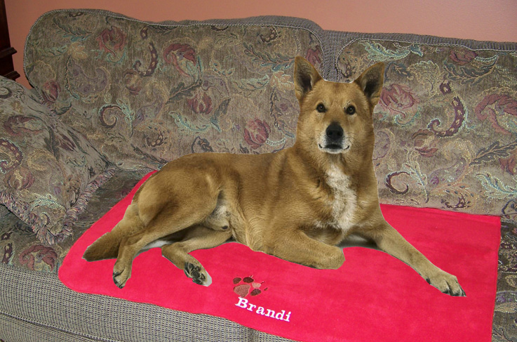 Personalized Pet Blanket 24 99