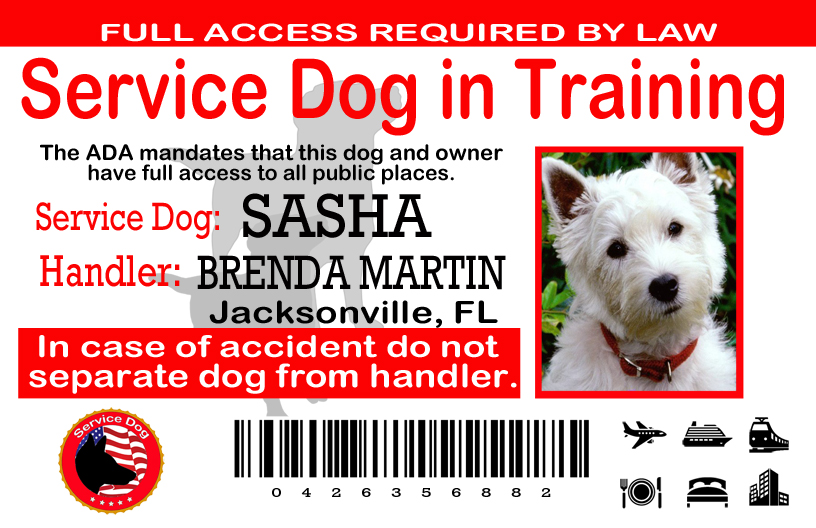 Service Dog In Training Id Tag For Pouch Or Wallet 1899