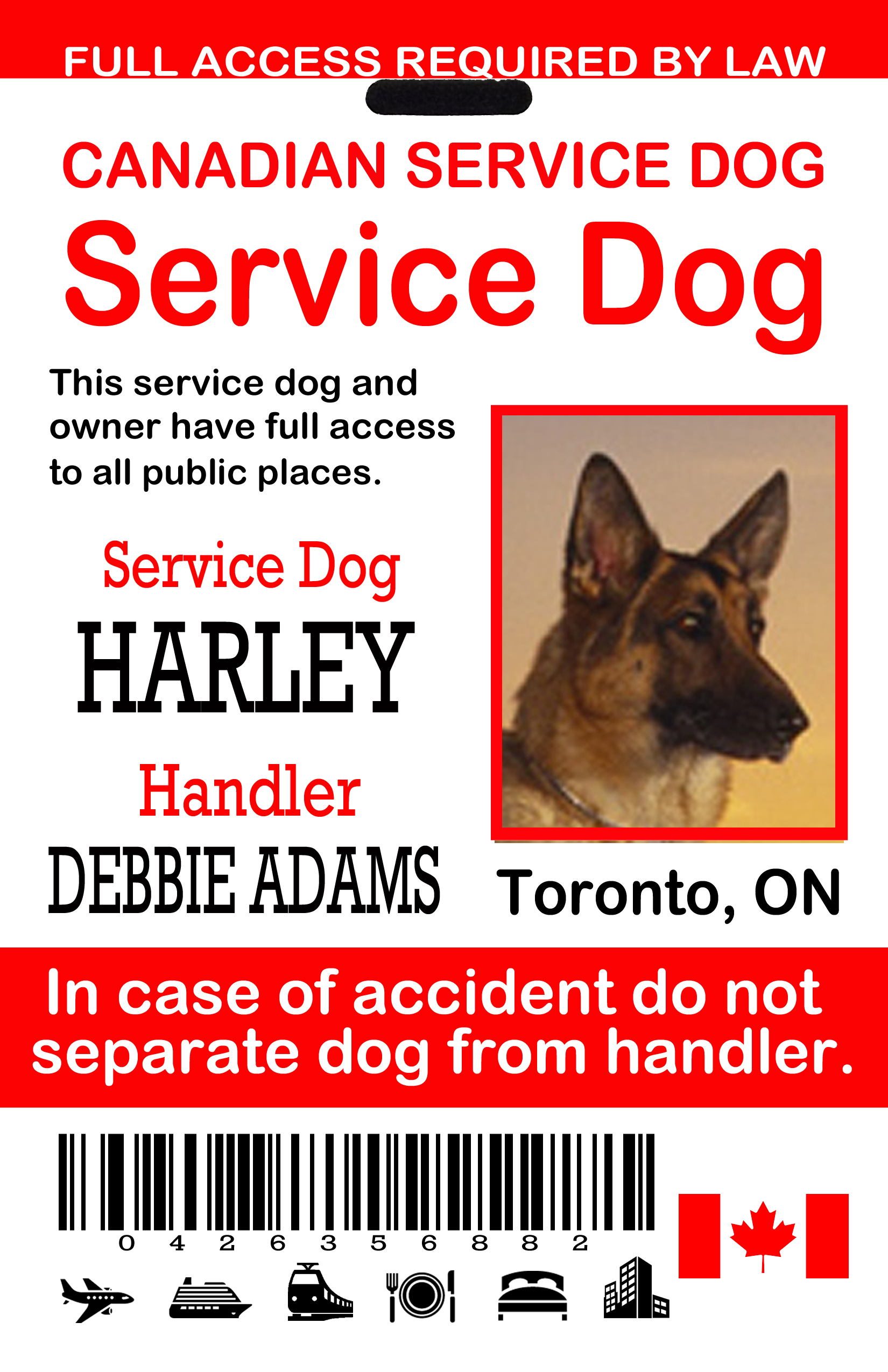 How To Identify A Service Dog In Canada